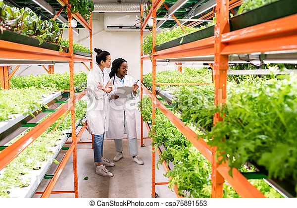 sorts, 新しい, 研究者, 植物, 勉強, 女性, intercultural, 若い, グループ - csp75891553