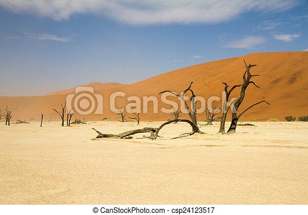 sosssusvlei, desierto, namibia - csp24123517