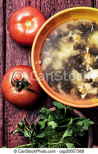 soup with fresh vegetables - csp20057368