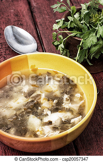 soup with fresh vegetables - csp20057347
