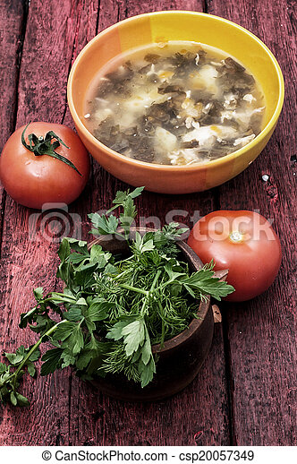 soup with fresh vegetables - csp20057349