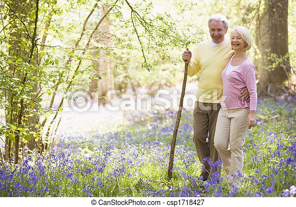 sourire, marche, dehors, couple, crosse - csp1718427