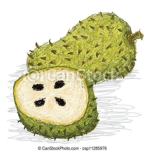 soursop, fruit - csp11285976
