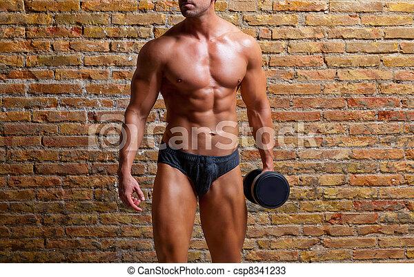 sous-vêtements, poids, formé, gymnase, homme muscle - csp8341233
