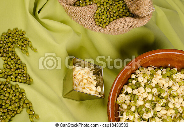 Soy beans still life - csp18430533