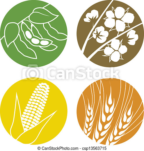 Soybeans, Cotton, Corn and Wheat - csp13563715