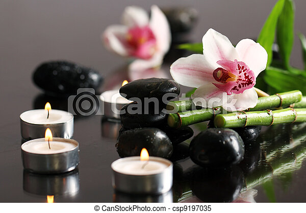 Spa and wellness - csp9197035