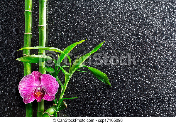 spa background - drops, orchid  - csp17165098