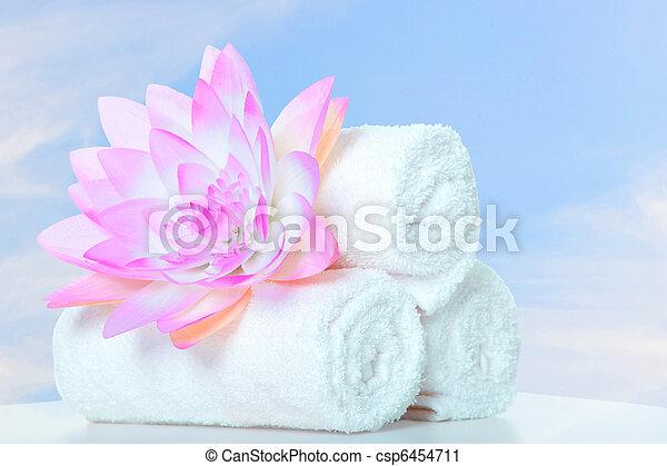 spa massage - csp6454711