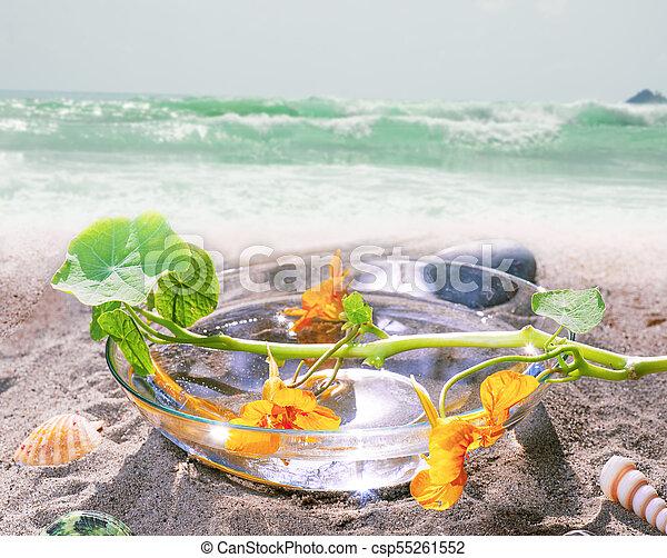 spa still life on beach - csp55261552