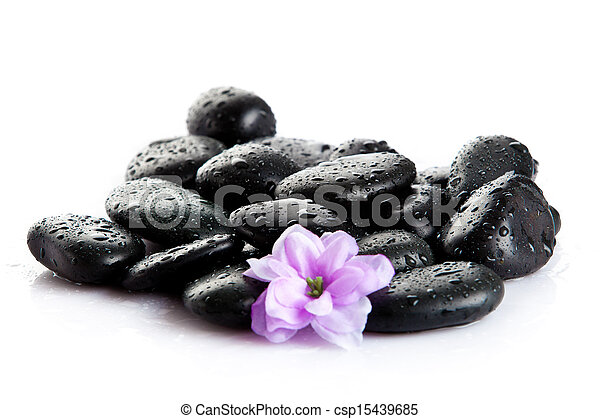 Spa stones and purple flower, isolated on white. flower in stone with drops of water - csp15439685