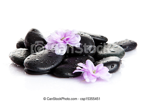 Spa stones and purple flower, isolated on white. flower in stone with drops of water - csp15355451