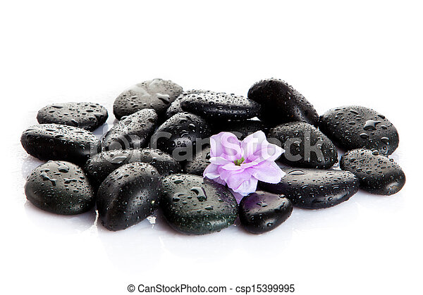Spa stones and purple flower, isolated on white. flower in stone with drops of water - csp15399995