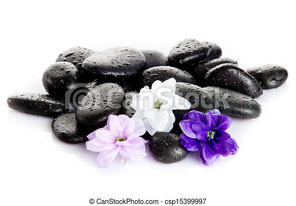 Spa stones and purple flower, isolated on white. flower in stone with drops of water - csp15399997