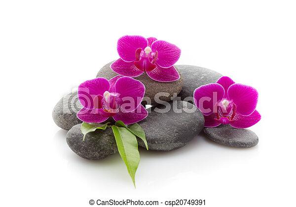 Spa stones - csp20749391