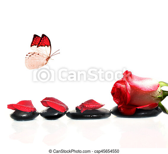 Spa stones with rose flower and butterfly on a white background. - csp45654550