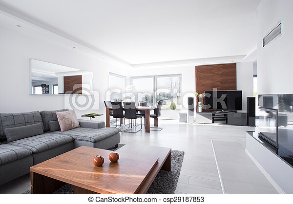 Spacious living room - csp29187853