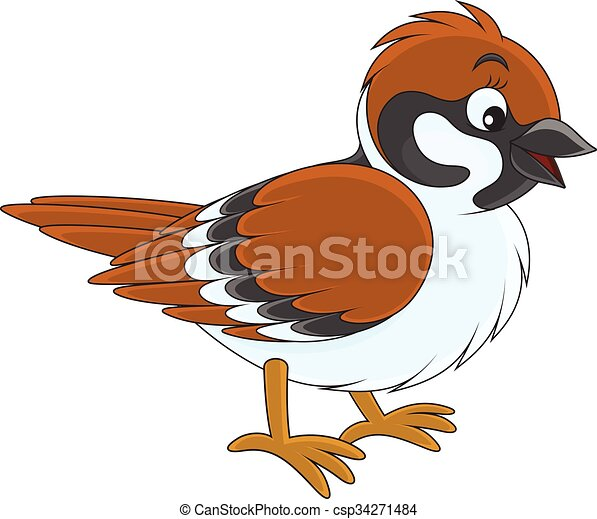 sparrow vector illustration of a sparrow on a white background rh canstockphoto com sparrow clipart images house sparrow clipart