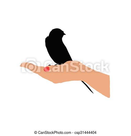 sparrow in hand vector - csp31444404