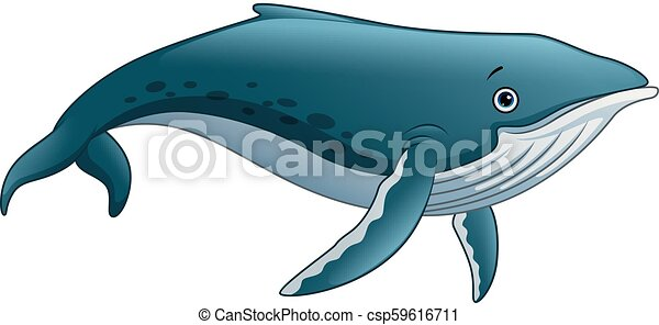 Vector Illustration Of Sperm Whale Cartoon Canstock