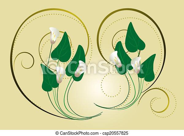spi, decoração, flores, calla - csp20557825