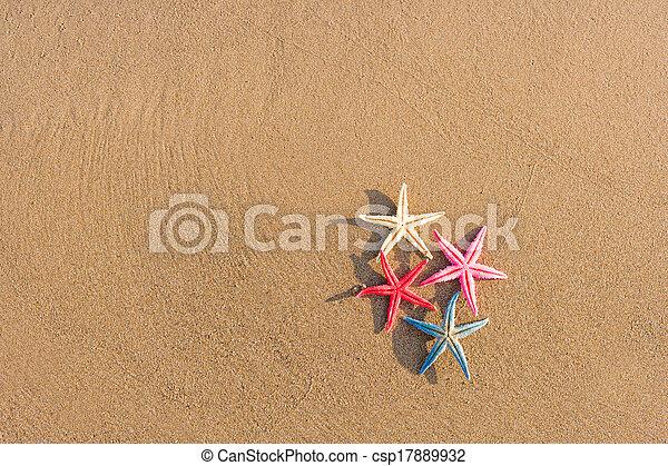spiaggia, alba, starfish - csp17889932