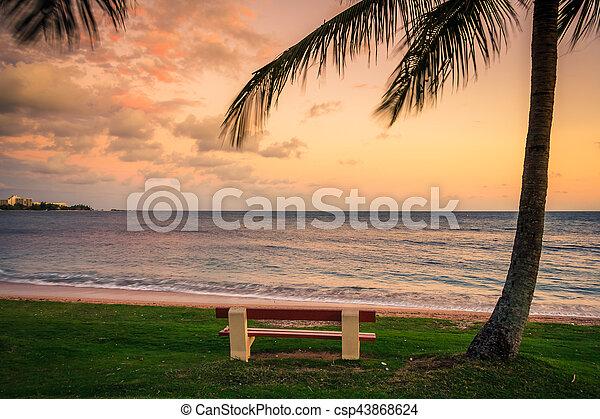 spiaggia, caledonia, noumea, nuovo - csp43868624