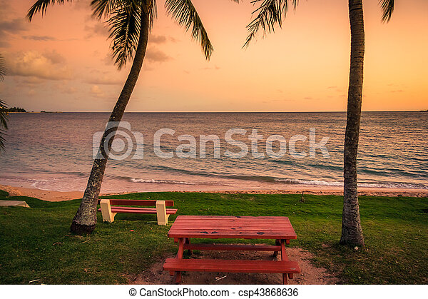 spiaggia, caledonia, noumea, nuovo - csp43868636