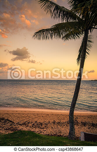 spiaggia, caledonia, noumea, nuovo - csp43868647