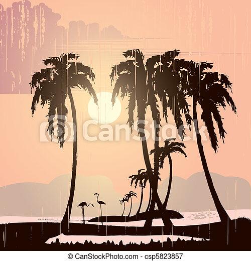 spiaggia - csp5823857