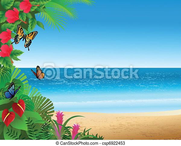 spiaggia tropicale, fondo - csp6922453