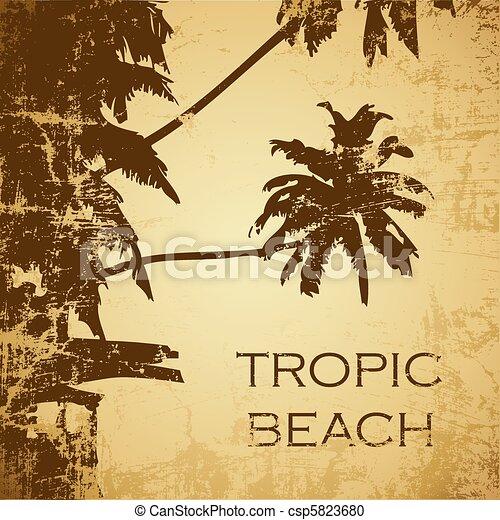 spiaggia - csp5823680