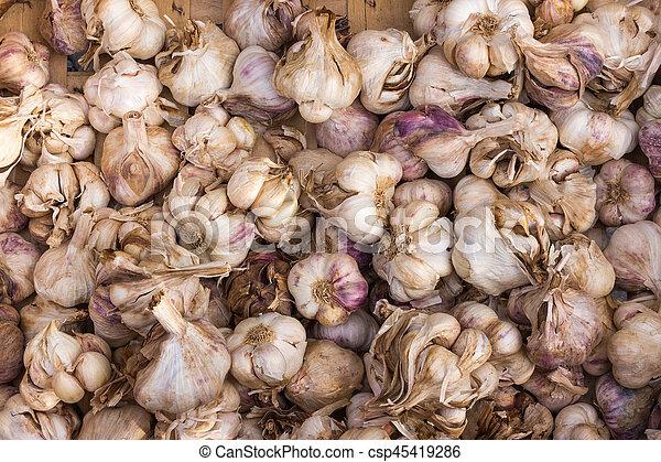 spicy garlic - csp45419286