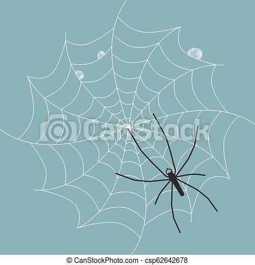 Spider on Wet Web - Vector - csp62642678