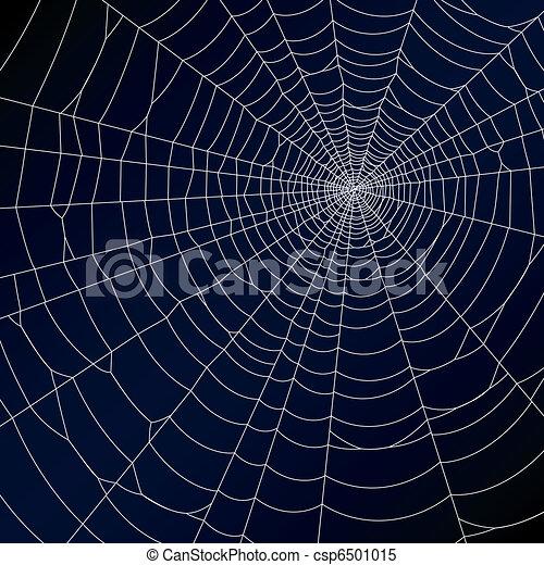 Spider web - csp6501015