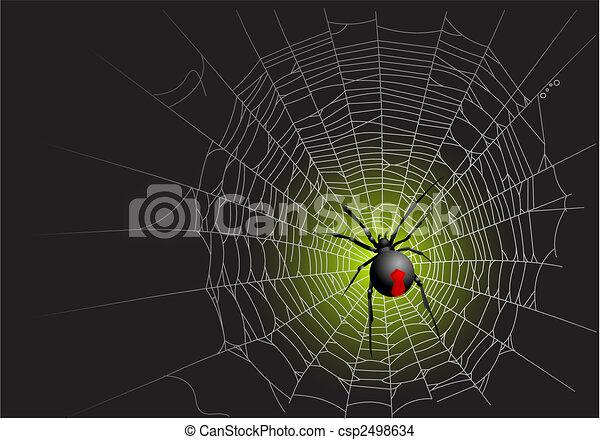 Spider web - csp2498634
