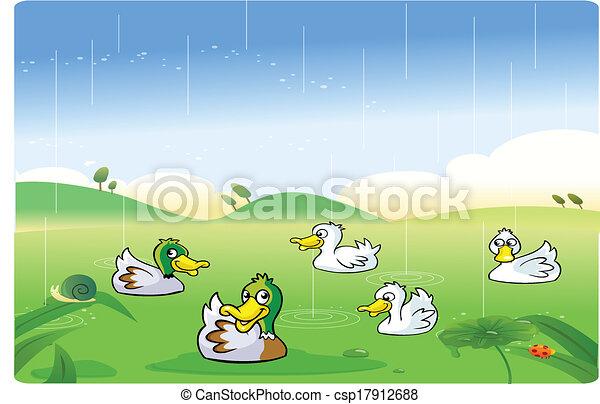 Enten, die im Regen spielen - csp17912688