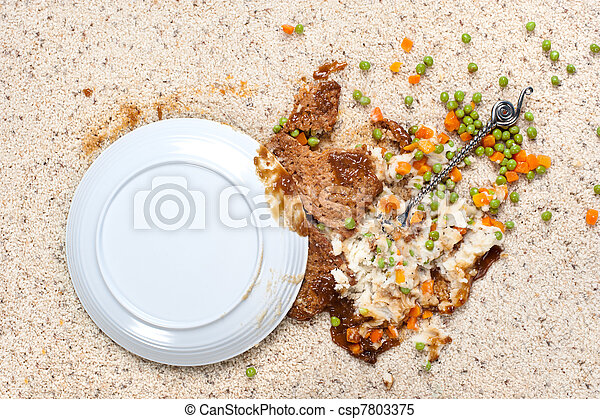 Spilled plate of food on carpet - csp7803375