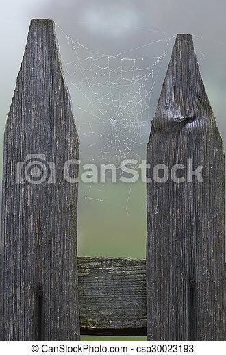 Holzern Spinnennetz Zaun Tau