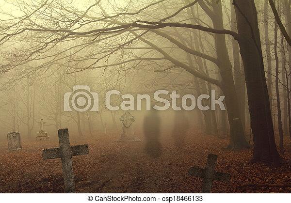 spooky, cimetière, forêt - csp18466133