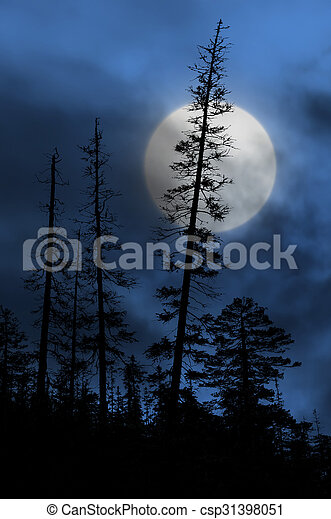 spooky forest with silhouettes of trees - csp31398051