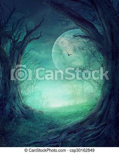 spooky, halloween, forêt - csp30162849