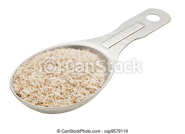 Spoon Of Psyllium Seed Husks Psyllium Seed Husks Dietary