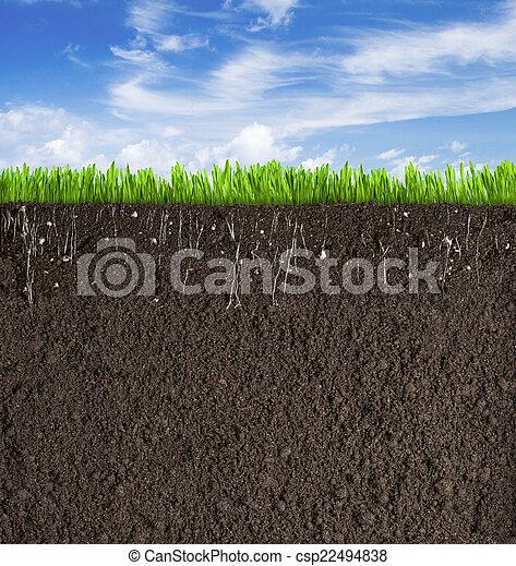 sporcizia, suolo, sezione, cielo, fondo, sotto, erba, o - csp22494838