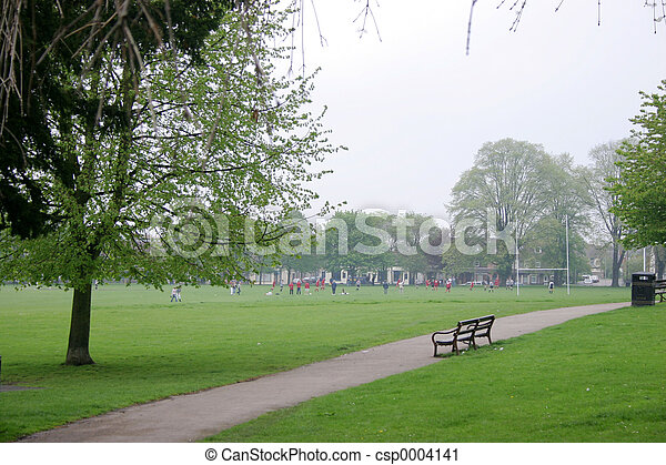 Sports Playing Field - csp0004141