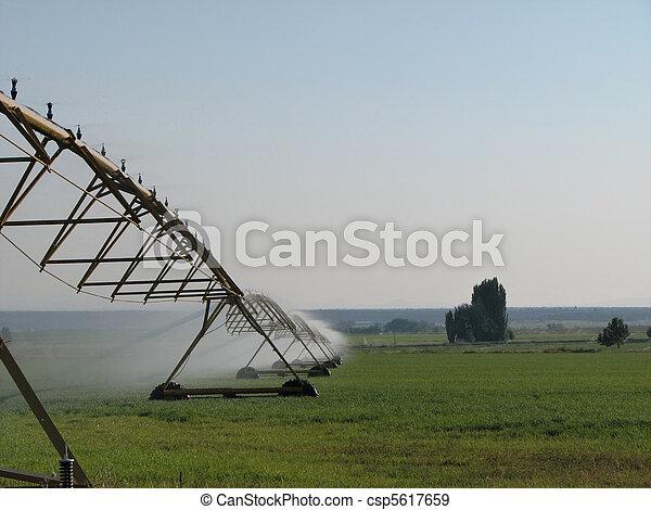 spray irrigation - csp5617659