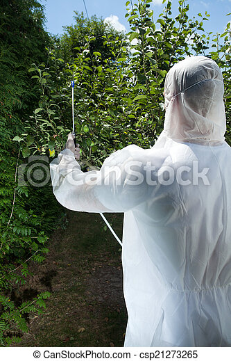 Spraying tree in a orchard - csp21273265