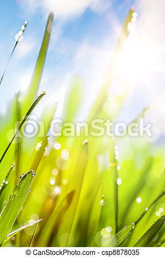 Spring abstract nature background - csp8878035