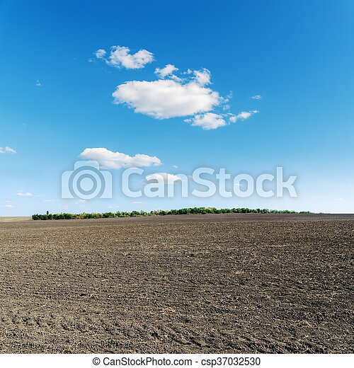 spring agriculture black field and blue sky - csp37032530