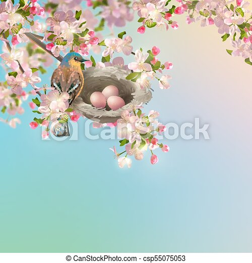 Spring Apple blossom - csp55075053